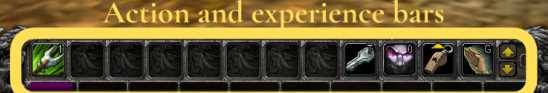 Action and experience bars in World of Warcraft